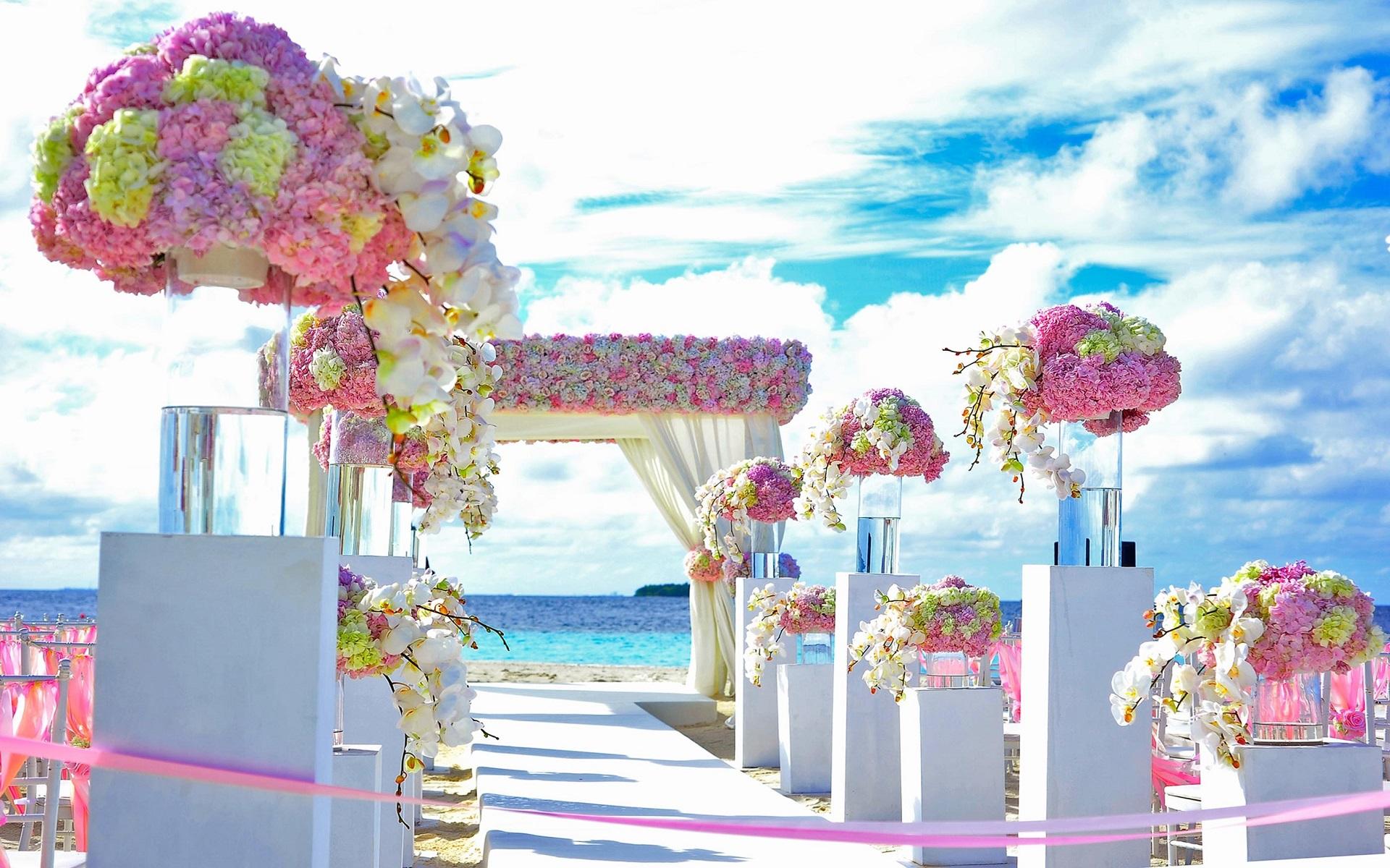 Beach-beach-wedding-chairs-169192b